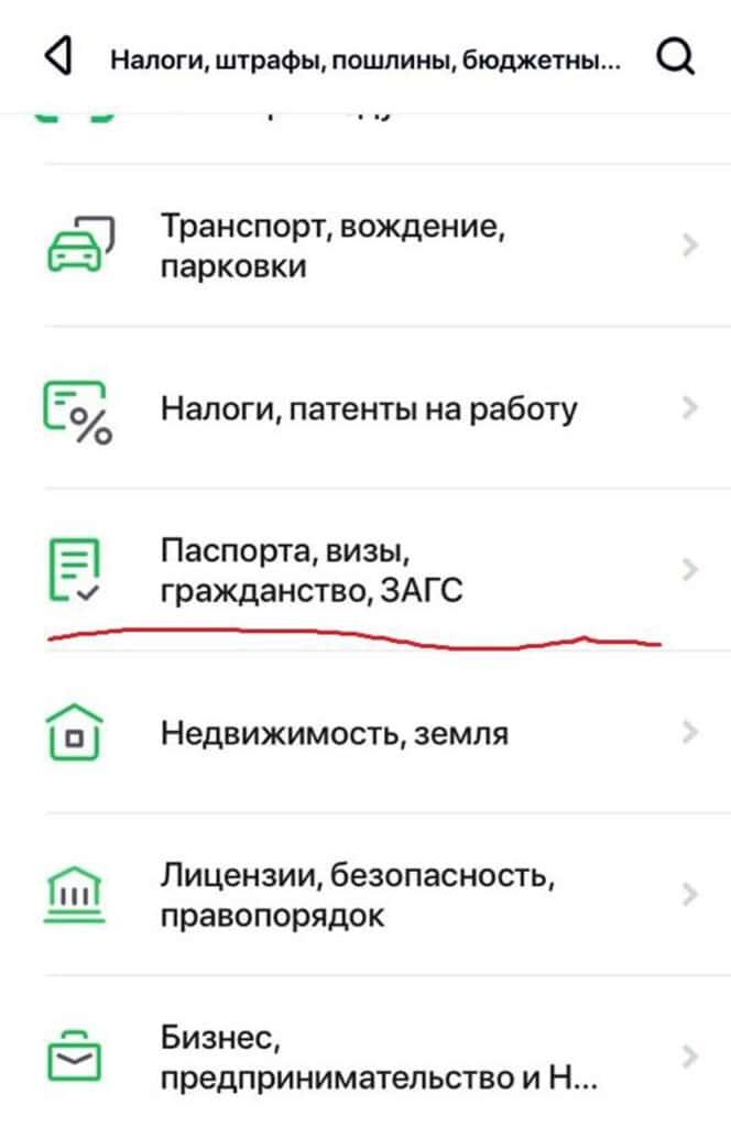 Госпошлина за паспорт РФ через мобильное приложение 2